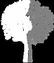 Mischholz_Logo_für_schwarz.png