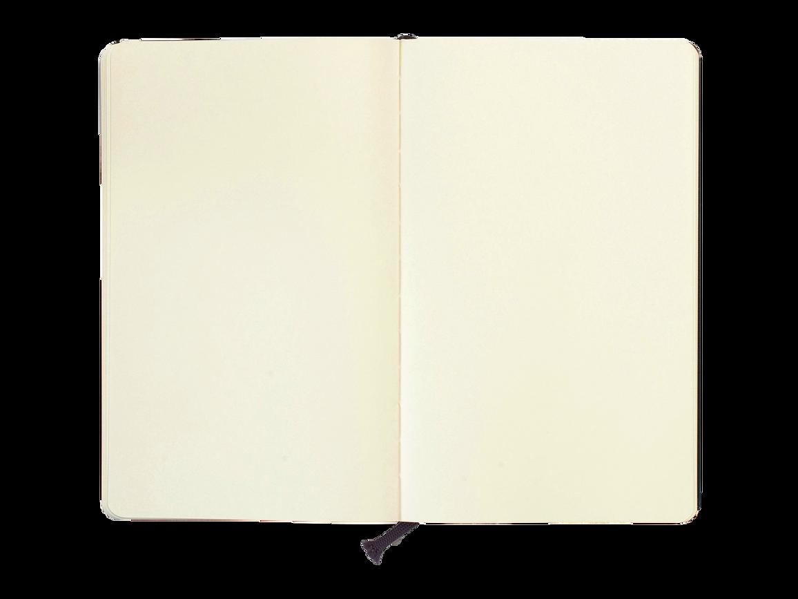 moleskine-sketchbook-inside blank.png