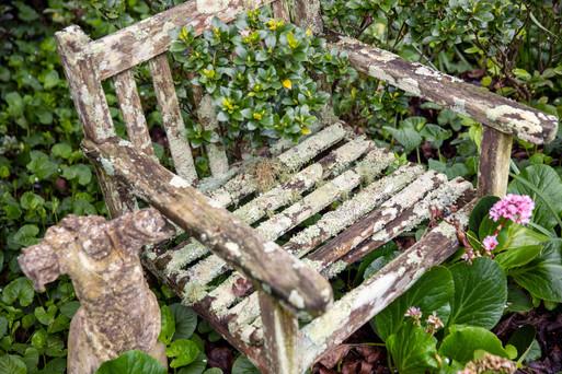 moss_chair.jpg