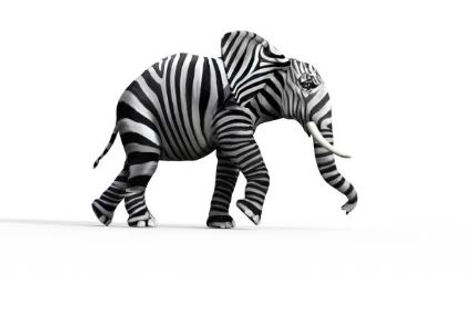1163846304 elephant zebra.JPG