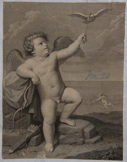 Querubín y paloma