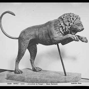 León proveniente de Pompeya