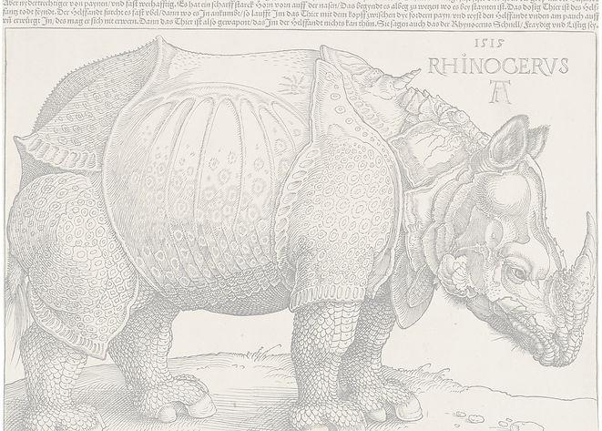 4_D%C3%BCrer's_Rhinoceros%2C_1515_edited