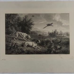 Diane y Blonde: Perros de Louis XIV