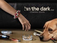 In the Dark Poster.jpg