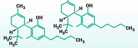 Cannabinoide.jpg
