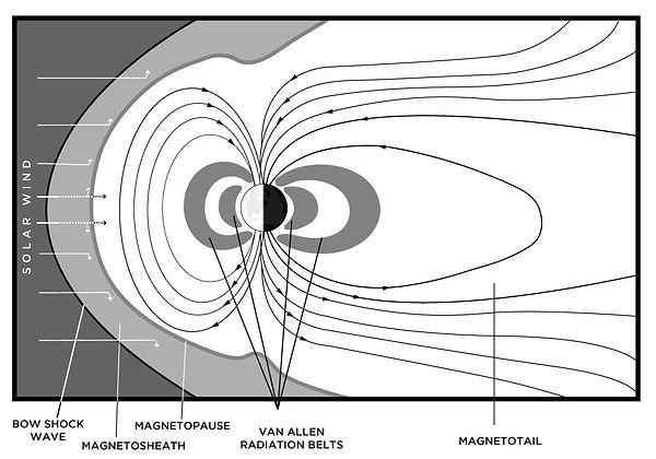 Figure1A-Graph.jpg