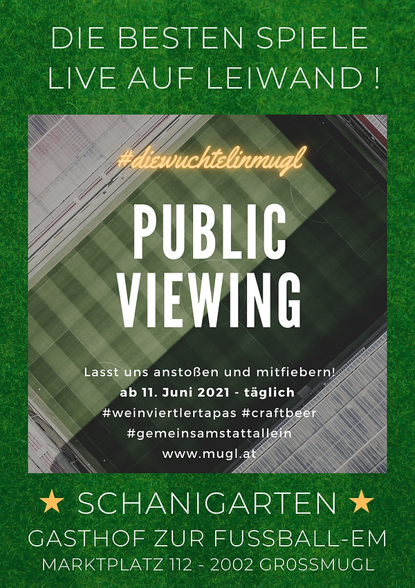 Mugl public viewing II.png