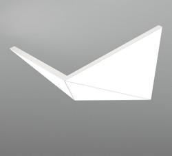 NHP LARGE BIRD 3T1000A_neonny_nail