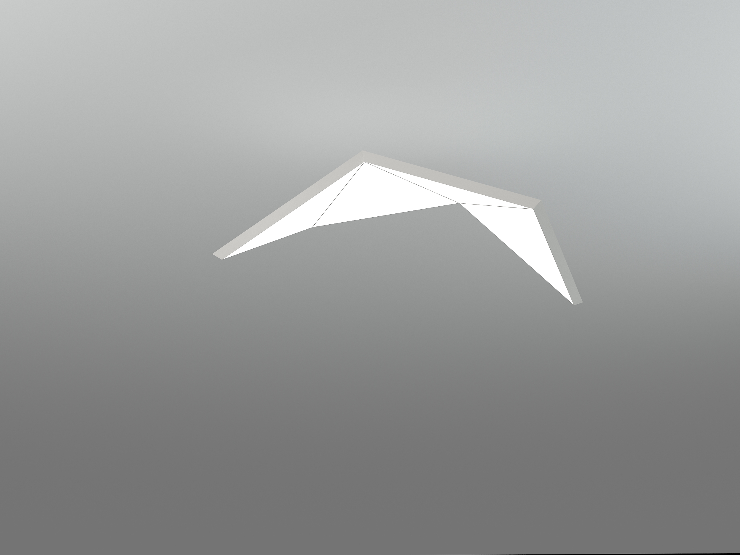 NHP LARGE BIRD 4T1000F_neonny