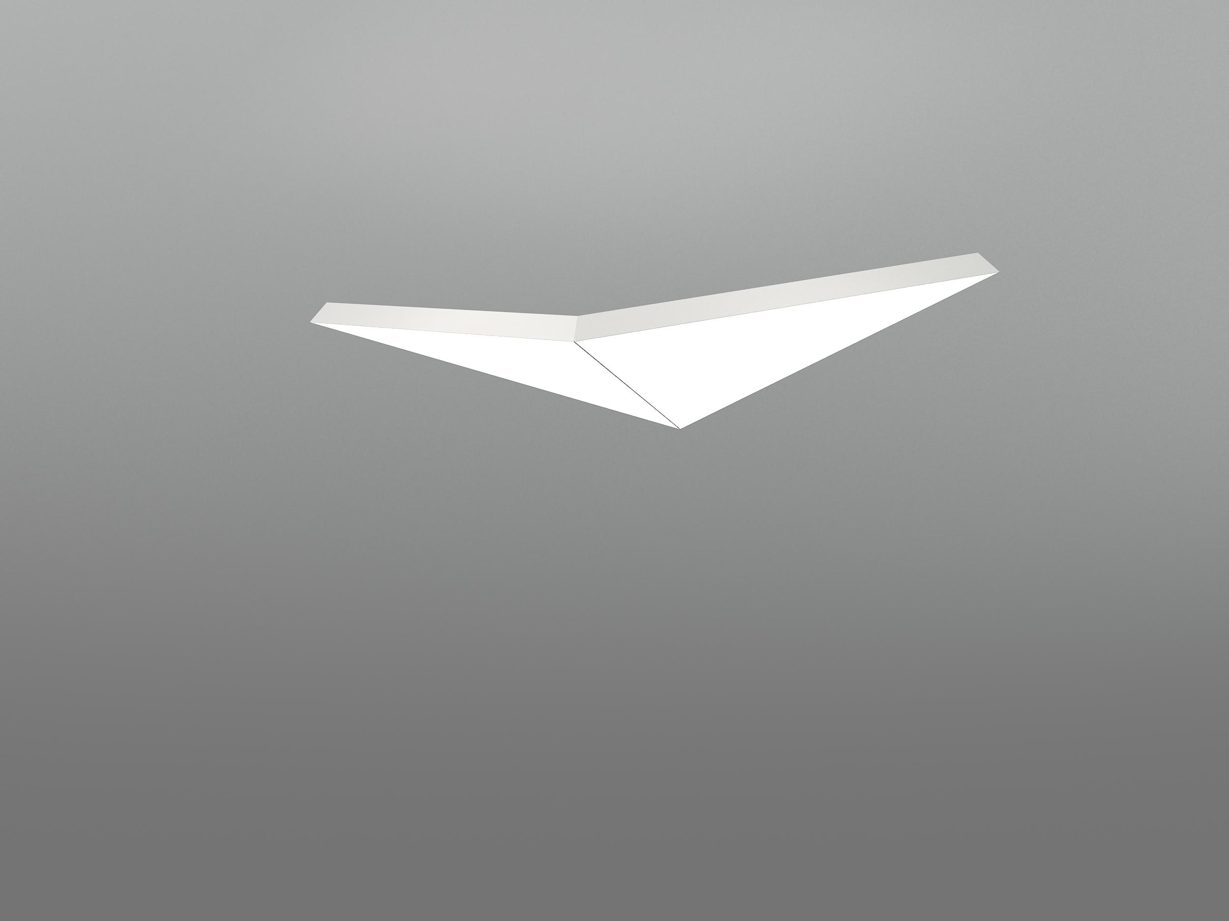 NHP LARGE BIRD 2T1000A_neonny