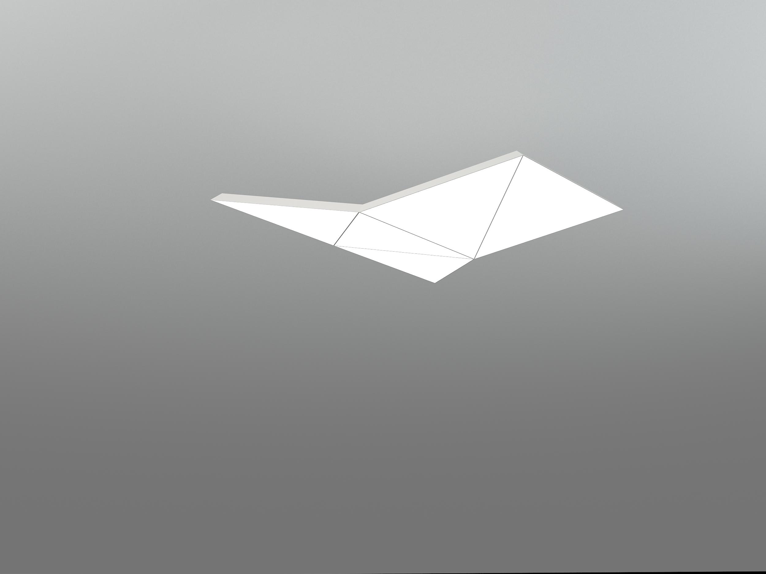 NHP LARGE BIRD 5T1000F_neonny