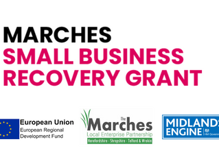 Marches Small Business Recovery Grant launched