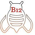b12 icon (1).jpg