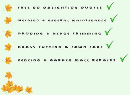 Weeding & General Maintenance