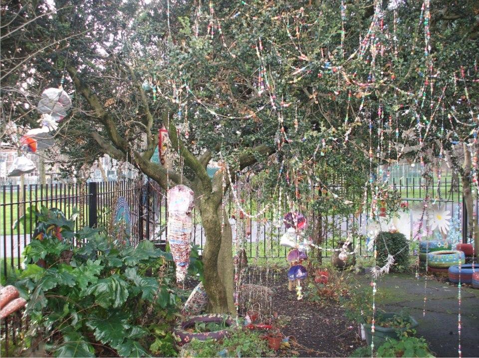 Box Tree – Bead Tree