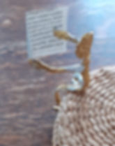 Foil Figure 2.jpg