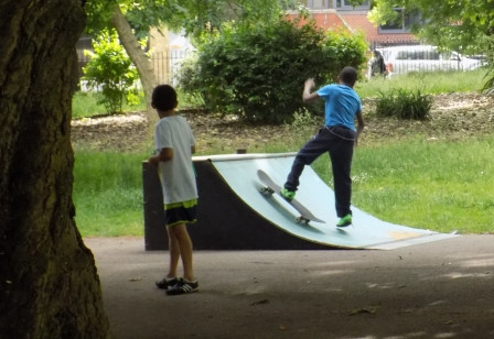 solo skateboarder 2016.jpg