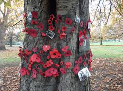 Horsechestnut Tree  Rememberance Tre