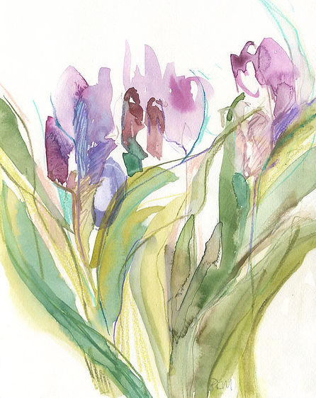 Tulips 1, by Pippa Meddings.jpg