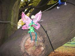Hornbeam – Fairy Tree