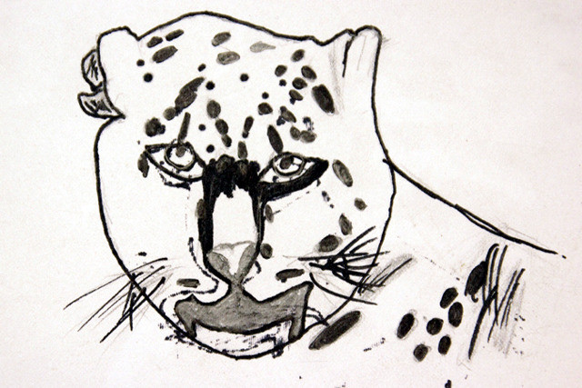 tiger drawing_edited.jpg