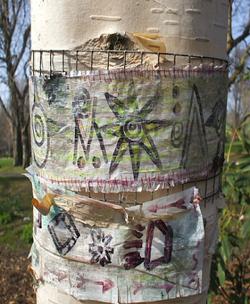 Birch Trees- Secret Messages