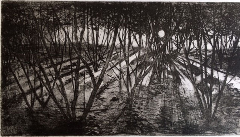 Early Morning Coppice (etching).jpg