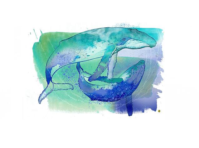miniwhales.jpg