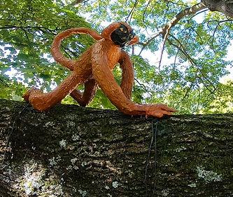 monkey 5.jpg