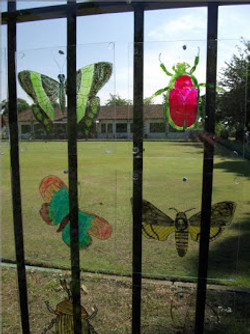 Bowling Green Fence Insects