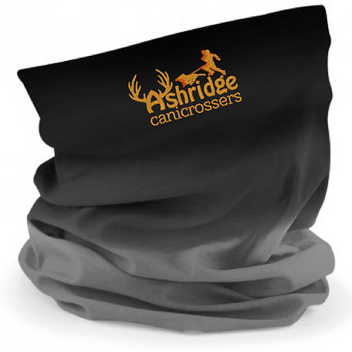 Ashridge Canicrossers - Ombre Morf B905