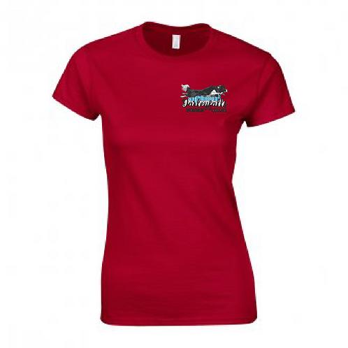 Darleyfalls Border Collies - GD72 Ladies T-Shirt