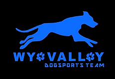 Wye Valley DST Sapphire Blue.png