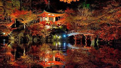 Japanese Garden sake.jpg
