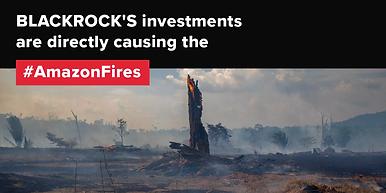 blackrock-deforestation-02-twitter (1).p