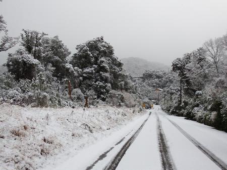 Snow arrives