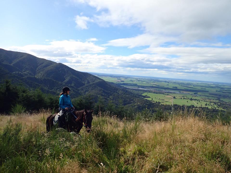 horse treking 1