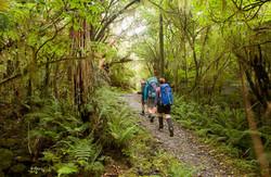 Go on a breathtaking walks