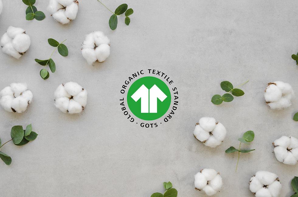 Cotton_1.jpg