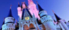 Walt Disney World Authorized Disney Vacation Planner