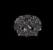shellstone-logo-kuronew_edited.png