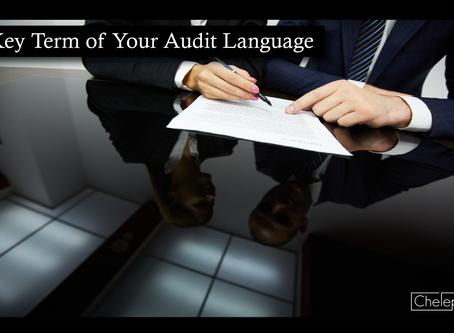 Key Term of Your Audit Language