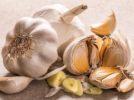 Healthy Food – Garlic and Tofu
