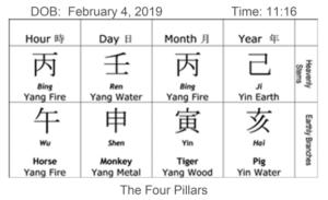 2019 Animal Forecast:  Pig