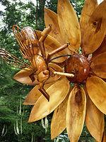 Bee_closeup_Lisa_Mattei.JPG