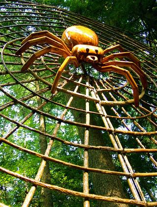 Spider & Web_LM2