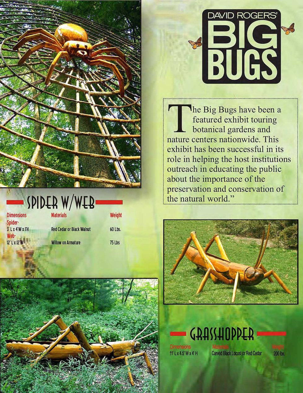 1BigBugsPackage4.19pdf_Page_07.jpg
