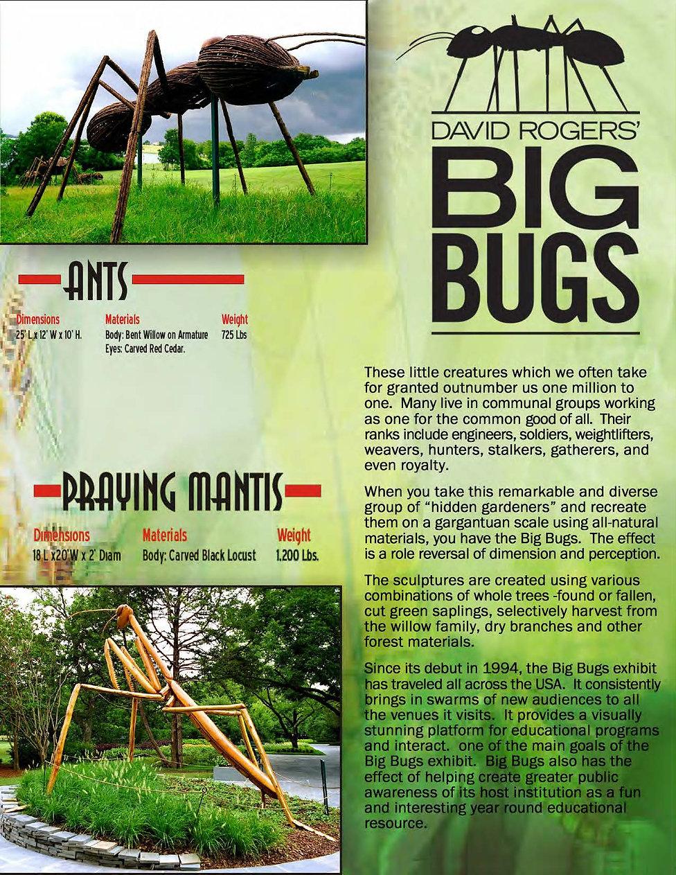 1BigBugsPackage4.19pdf_Page_04.jpg