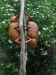 LadyBugs on Branch